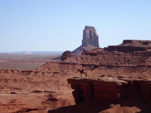 「8大国立公園」を巡ってきました。